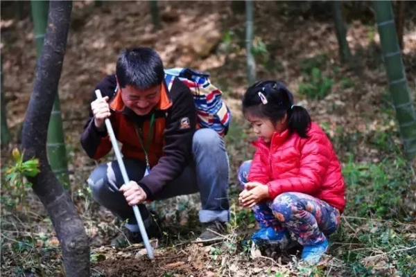 Bamboo shoots cultural festival to open in Sheshan