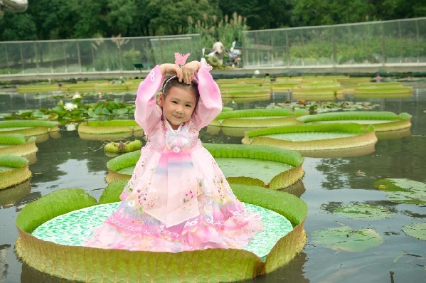 Sheshan blooms with ongoing lily expo